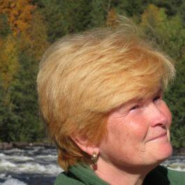 Cindy E Prescott